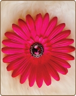 Daisy Flower Clippie Shocking Pink