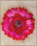 Daisy Flower Clippie Shades of Hot Pink