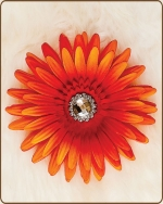 Daisy Flower Clippie Burst of Orange