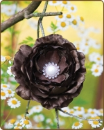 Ruffled Ranunculus Flower Clippie Chocolate