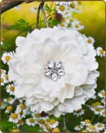 Dahlia Flower Clippie Cream - 5 inch