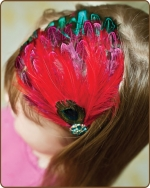 Multi Colored Combination Feather Headband